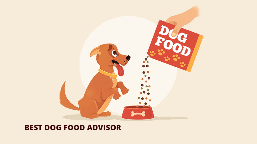 best dog food advisor