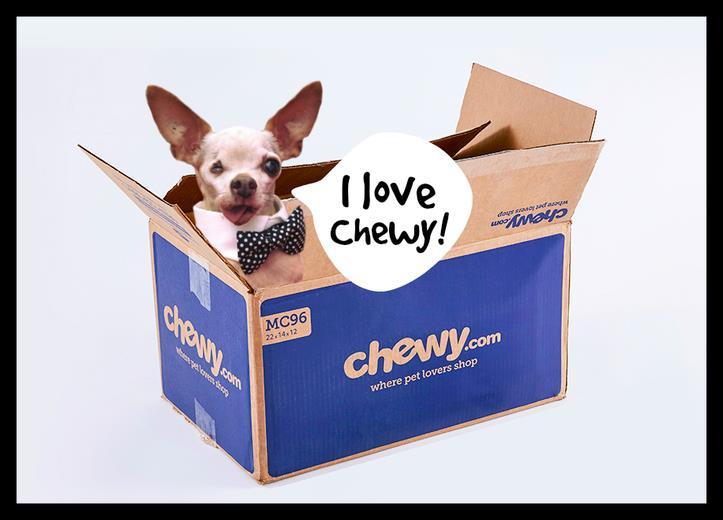 buy stella chewy dry raw pet food