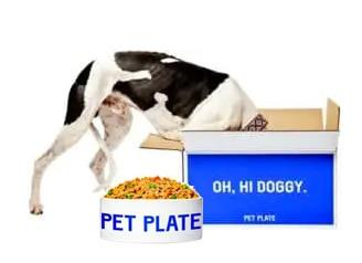 fastest delivery service for pet food