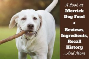 That Merrick dog meal recall has happened in the past