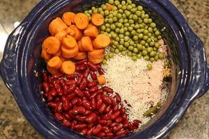 homemade meals for pet-companions