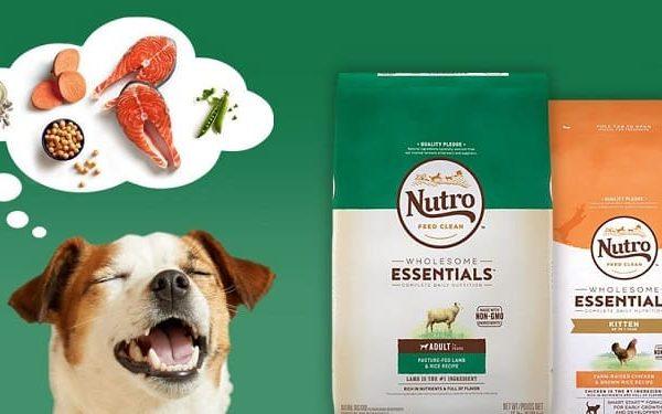 the nutro dog food company big review