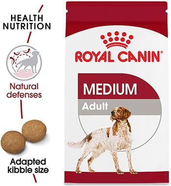 royal canin dry and wet dog food
