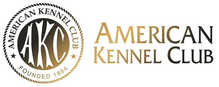 American Kennel Club for all dog breeds hound-shelter