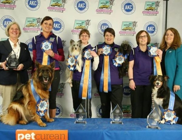 Read reviews about American Kennel Club AKC Dog Breeders
