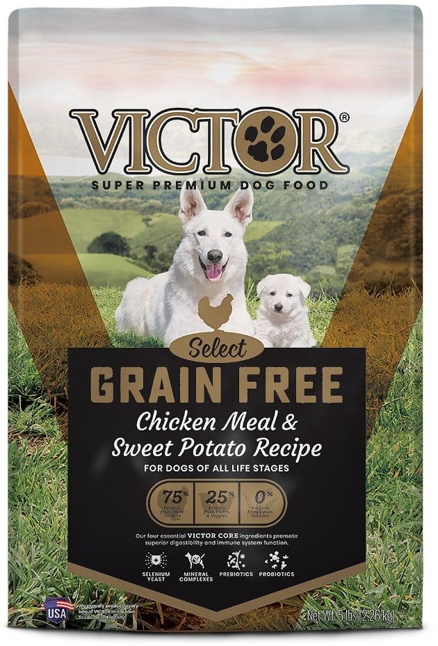 Victor dog food reviews help consumers