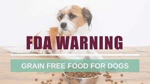 fda warning regular updates on pet food that has no grains