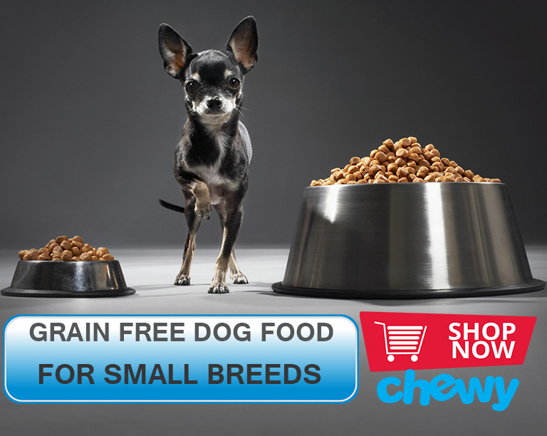 How to buy Chewy grain free dog food